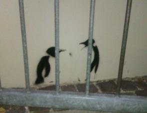 Oh no, penguins in jail in Schwabing