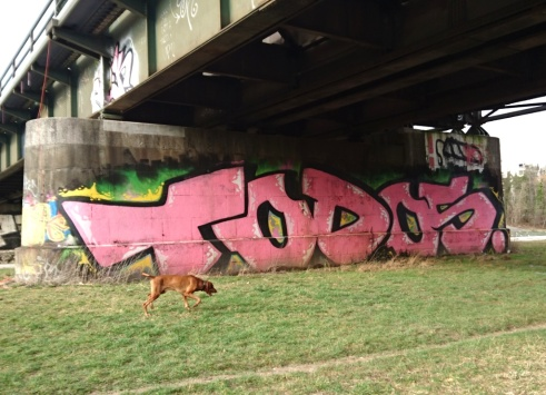 Todos,... under the Wittelsbacherbrücke